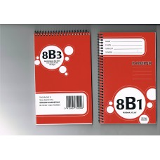 DAILY SPECIAL 8B1 NOTEBOOK