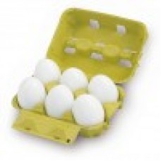 EGGS IN TRAY SET 6