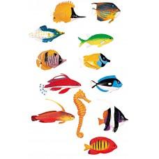 FUN FISH COUNTERS 60'S