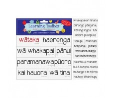 MAORI MAGNETS - CLASS TIMETABLE