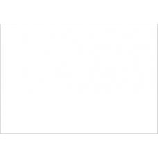 WHITE PRES PAPERS Reflex A4 90gsm pkts 500