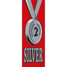 SELF ADHESIVE RIBBONS - SILVER - 100'S - SR707