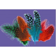 PARTRIDGE FEATHERS - ASSORTED